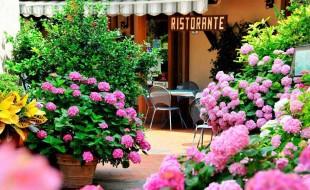 Ristorante Dal Falco is near Il Pozzo, a luxury villa in Tuscany